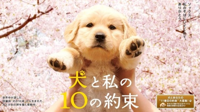 10 Promises To My Dog Ep 1 Cover
