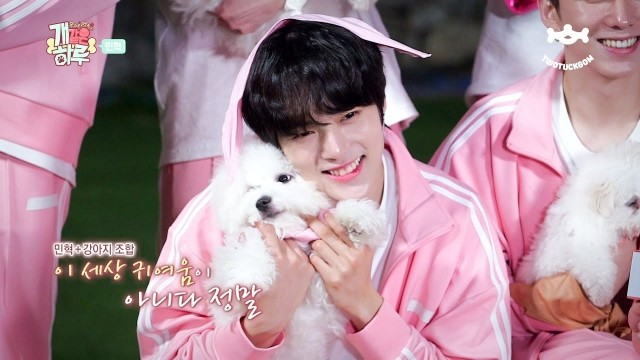 Monsta X's Puppy Day Ep 3 Cover