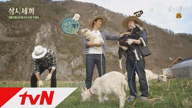 Three Meals a Day Season 2 Ep 18 Cover