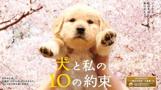 10 Promises To My Dog Episode 1 Cover