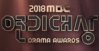 2018 MBC Drama Awards cover