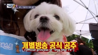 Dog Star TV Episode 1 Cover