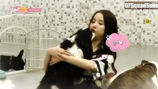 GFriend! Look after our Dog cover