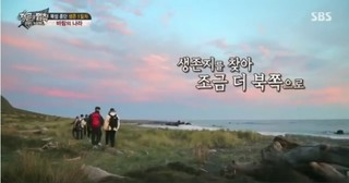 Law Of The Jungle In Wild New Zealand Episode 1 Cover