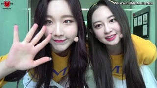 MOMOLAND's Memojang: Season 3 Episode 1 Cover