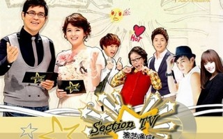Section TV cover